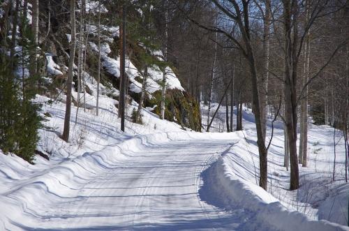 Täysi talvi Kytäjärven rantamilla