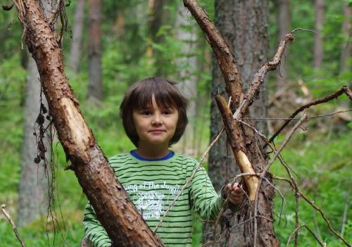 Metsän poika