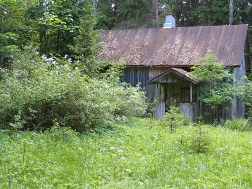 Unohdettu talovanhus
