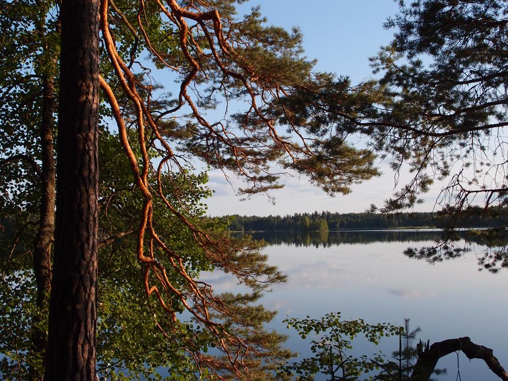 Ilta-aurinko Heinijärvellä