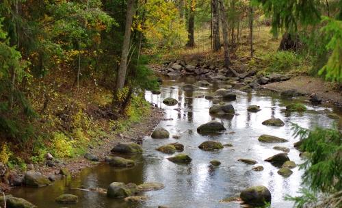 Vantaanjoki Kittelässä syksyllä 2013