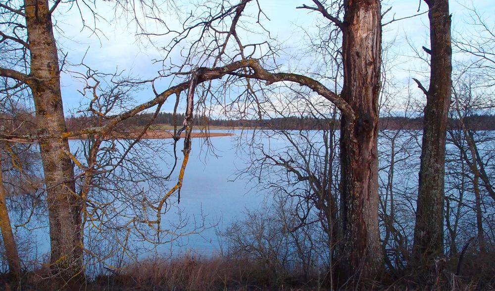 Marraskuinen Kytäjärvi
