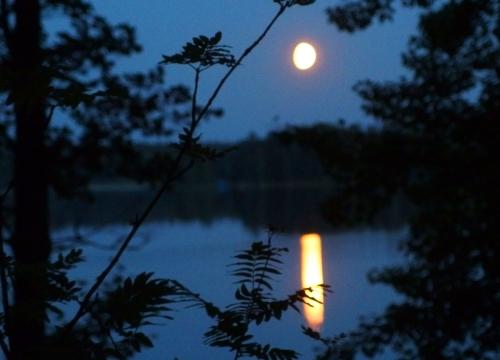 Mökin yövalot (Ritvan kuva)