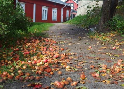 Omenainen kuja, Vanha Porvoo