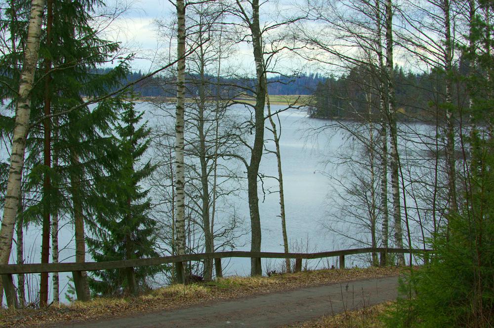 Kytäjärvi ja metsätie