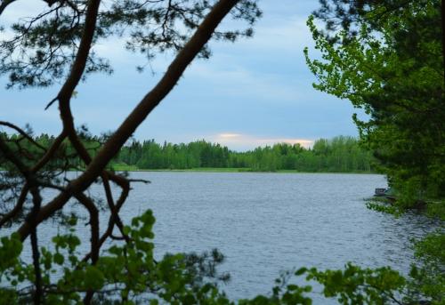 Mökkijärven alkukesä