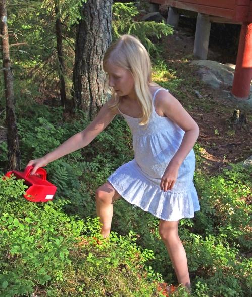 J-tyttö kokeilee marjanpoimuria
