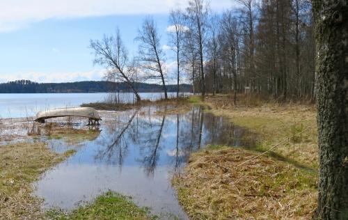 Järvi tulvii