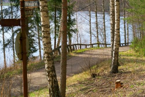 Järven pohjoisrannan metsätie